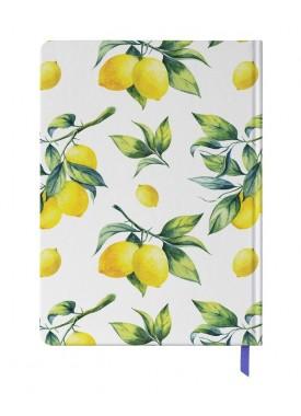پلنر رنگی مسترنوت طرح لیمو